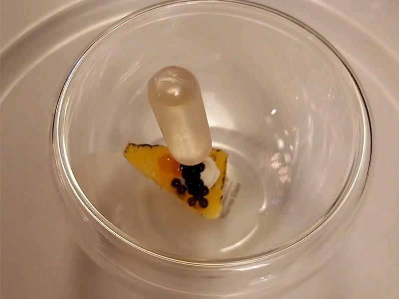 Bonus -Ananas Havyar Terayağ Domates Suyu